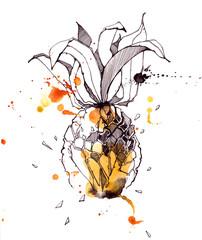 pineapple © okalinichenko