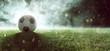 Quadro Fußball liegt auf Stadionrasen im Rauch