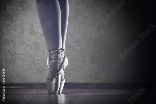 The girl in Pointe stands on the wooden floor in the contour light
