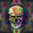 Постер, плакат: Череп на цветном творческом таинственном фоне
