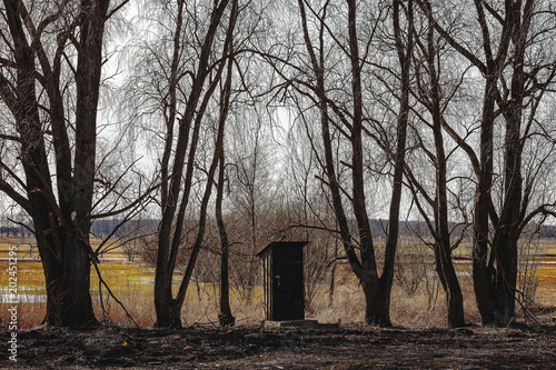 a small toilet cabin stands among large trees