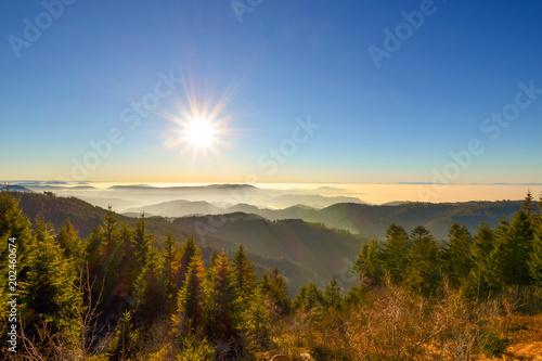Traumhafte Aussicht auf Schwarzwald / Schwarzwaldhochstrasse