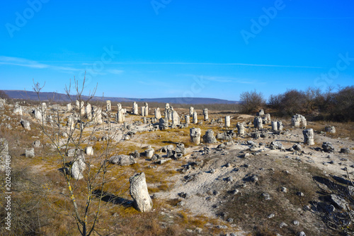 Pobiti Kamani, The Stone Forest Natural Reserve in Bulgaria