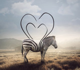 Zebra and heart stripes