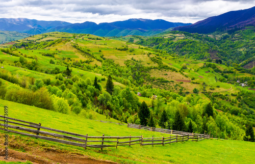 Fotobehang Lime groen wooden fence along the grassy hillside. beautiful springtime landscape of Carpathian mountains on a cloudy day.
