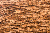 Close Up Background and Texture of Cork Board Wood Surface, Nature Product Industrial - 202575088