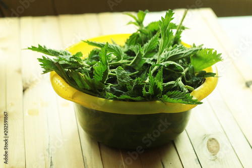 A plastic yellow bowl full of fresh nettles sits on a wooden table prepared for washing and cooking