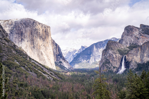 Yosemite national Park - 202600452