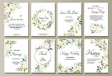 Set of card with flower rose, leaves. Wedding ornament concept. Floral poster, invite. Vector decorative greeting card or invitation design background - 202603856