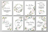 Set of card with flower rose, leaves. Wedding ornament concept. Floral poster, invite. Vector decorative greeting card or invitation design background - 202603894