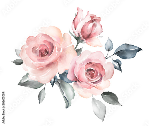 decorative watercolor flowers. floral illustration, Leaf and buds. Botanic composition for wedding or greeting card.  branch of flowers - abstraction roses, romantic - 202605099
