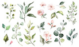 Big Set watercolor elements - wildflowers, herbs, leaf. collection garden and wild, forest herb, flowers, branches.  illustration isolated on white background, exotic  leaf. Botanic - 202605284