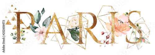 Wall mural watercolor illustration with wild flowers, herbs, rose. Cool print on T-shirt with geometric shape.  Lettering - paris