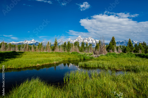 Aluminium Bergrivier Mountains in Grand Teton National Park with reflection in Snake River