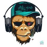 Music fan hipster monkey in headphone. DJ chimpanzee - 202733047