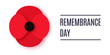 Anzac Day vector banner. Paper cut Red Poppy flower - a symbol of International Day of Remembrance. Poppy for Armistice day.