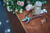 Still life of flowers and garden scissors