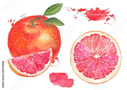 Grejpfruty z liść i grapefruitowa plasterek akwareli ilustracja na odosobnionym tle