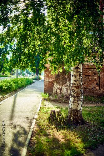 On summer street