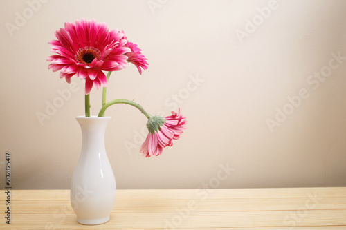Fotobehang Gerbera Gerbera flowers in a white vase on a wood table