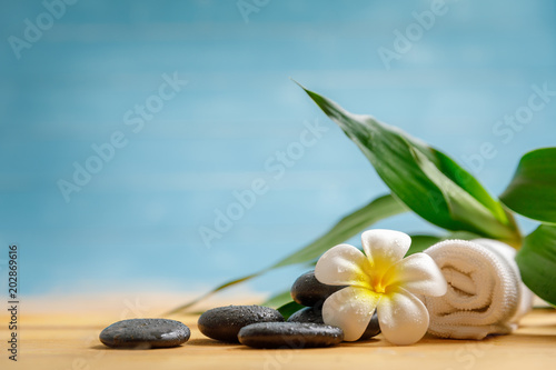 Plexiglas Zen spa concept with candle, stone, flower and bamboo, relaxation