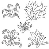 Hand drawn bush set isolated on white background for coloring book. Vector illustration. - 202889676