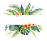 Watercolor vector banner tropical leaves and branches isolated on white background. - 202898262