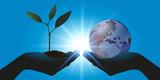 environnement - terre - plante - nature - globe - écologie - pousse - monde - climat - vie - 202904052