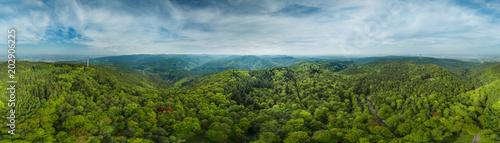 360° Luftbild Panorama Pfälzer Wald - 202906225