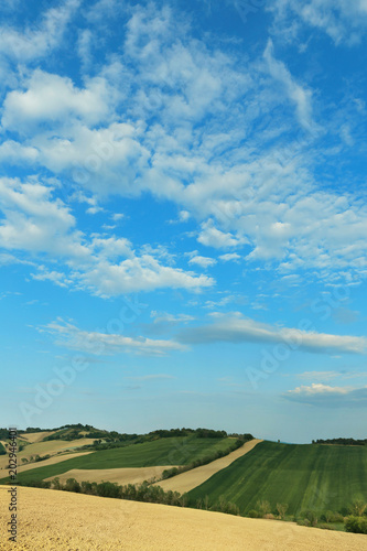 Plexiglas Blauw Countryside landscape, cultivated fields and blue sky