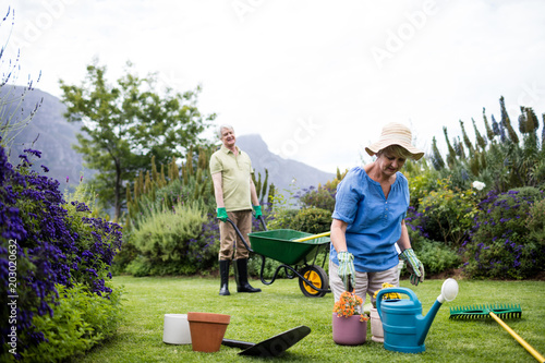 Poster Senior woman planting flower while senior man standing with wheelbarrow in background