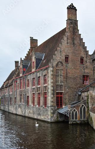 Plexiglas Brugge Swan and house