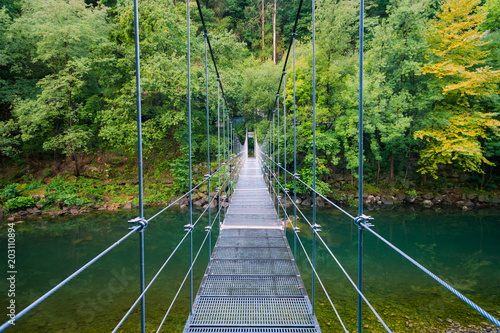 iron bridge in the forest