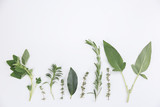 Assorted sprigs of fresh herbs displayed as a border on white with sage, basil, thyme, rosemary , oregano and laurel with copy space above
