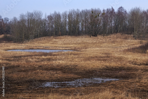 Plexiglas Lente Rural landscape with puddles on the field in early spring.