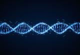 DNA  - 203238613