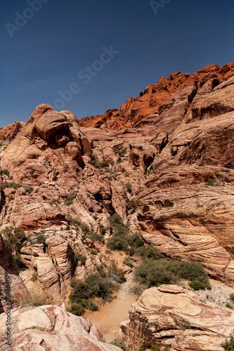 Plexiglas Zalm Desert