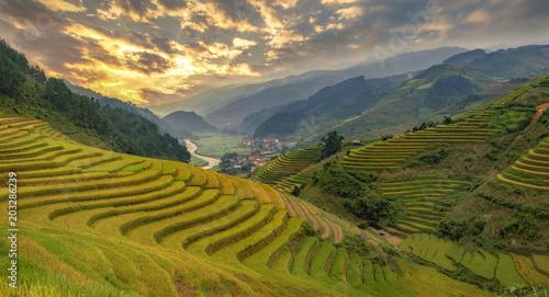 Plexiglas Rijstvelden Mu Cang Chai, landscape terraced rice field near Sapa, north Vietnam