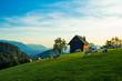 heuberg, salzburg, sommer