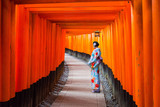 Woman in traditional kimono standing at the tunnel of torii gates, Japan - 203353299