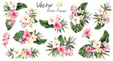 set Tropical vector flowers. card with floral illustration. Bouquet of flowers with exotic Leaf isolated on white background. composition for invitation to party or holiday - 203373863