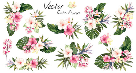 set Tropical vector flowers. card with floral illustration. Bouquet of flowers with exotic Leaf isolated on white background. composition for invitation to party or holiday