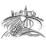 Wine on barrel and vineyard landscape - 203409298