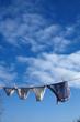 Leinwanddruck Bild - Unterhosen einer vierkoepfigen Familie trocknen nach dem Waschen auf der Waescheleine.