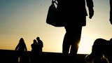 Silhouettes of people having a rest in the park at sunset, a dog walking in the evening - 203444008