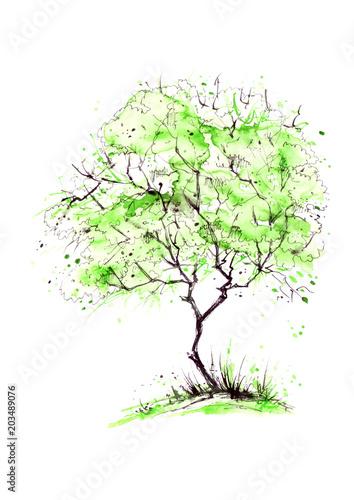 aquarell-sommerlandschaft-gruner-baum-auf-einem-hellen-gras