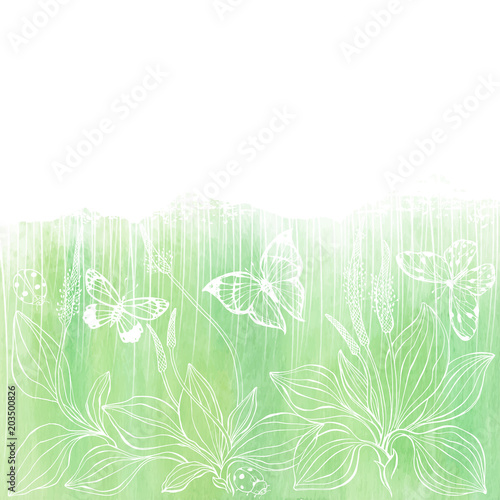 Fototapeta Floral vector background with plantain, insects and space for text on a green watercolor background. Invitation, greeting card or an element for your design.