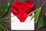 Envelope and red roses background flat lay text space, romantic card, love letter.