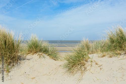 Fotobehang Noordzee Strand De Haan