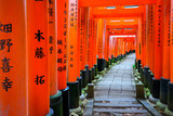 Senbon Torii at Fushimi Inari Shrine. - 203535672
